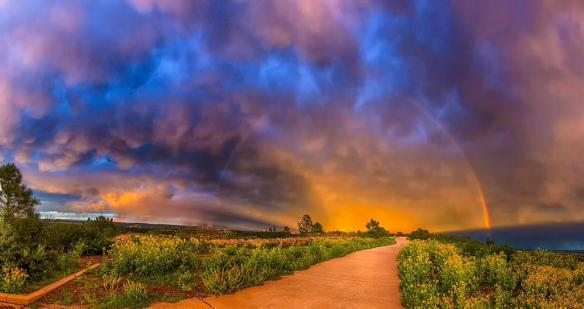 colorado-springs-colorado-photography-by-joe-randall