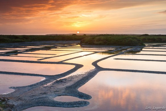 sunset-on-guerande-salt-evaporation-ponds-in-south-brittany-france-photography-by-loic80l