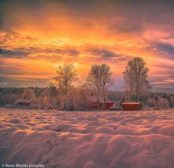 norwegian-light-photography-by-rose-maries