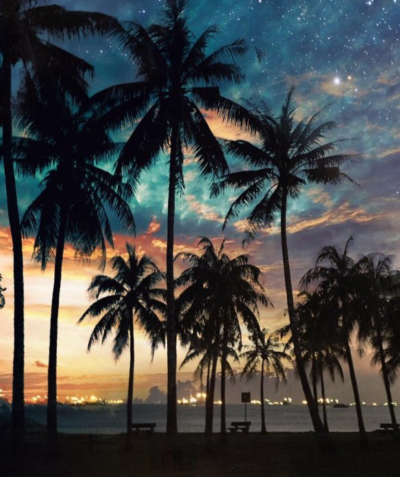 palms-and-stars-at-east-coast-park-beach-singapore-photography-by-dotzsoh