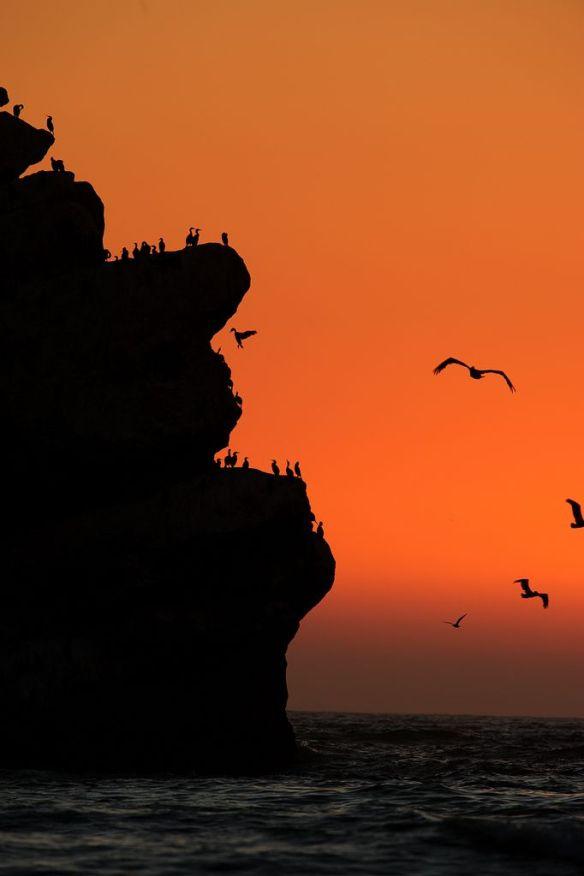 sunset-at-morro-rock-california-photography-by-howardignatius