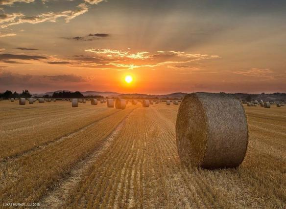 sunset-in-wolfpassing-germany-photography-by-lukas-hurner