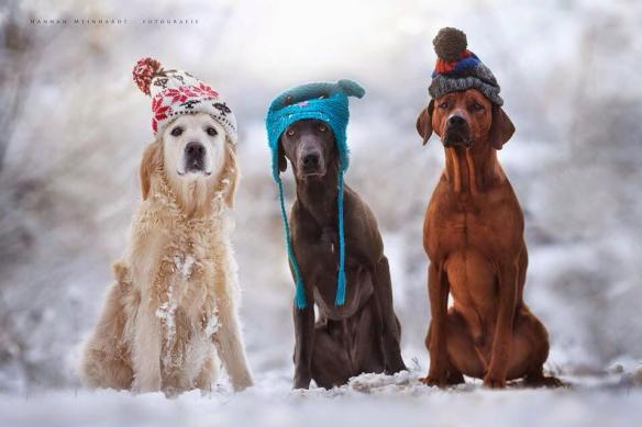 baby-its-cold-outside-photography-by-hannah-meinhardt