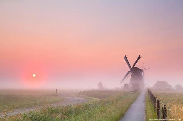 morning-in-the-country-photography-by-olha-rohulya