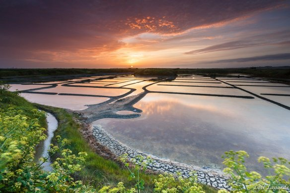 sunset-on-the-salt-evaporation-ponds-in-south-brittany-photography-by-loic80l
