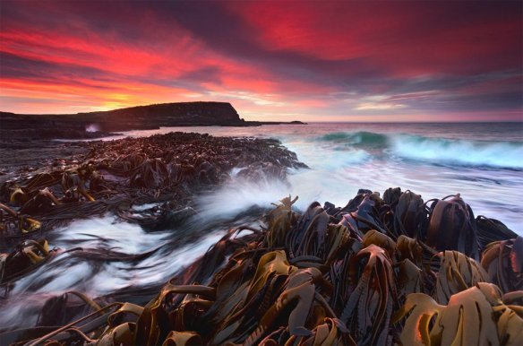 symphony-of-the-coast-photography-by-kah-kit-yoong
