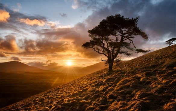 the-great-mell-fell-of-northern-england-photography-by-joe-stockdale