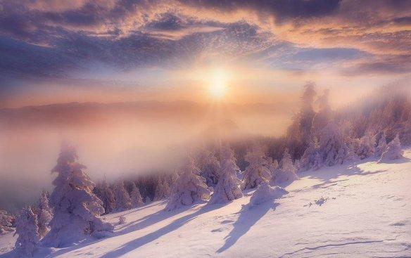 cold-light-photography-by-maurizio-fecchio
