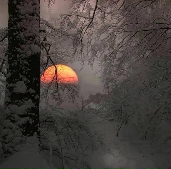 lapland-sunset-photography-by-veronika-pinke