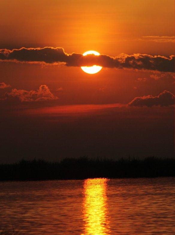 sunset-on-zambezi-river-zambia-photography-by-dietmar-temps