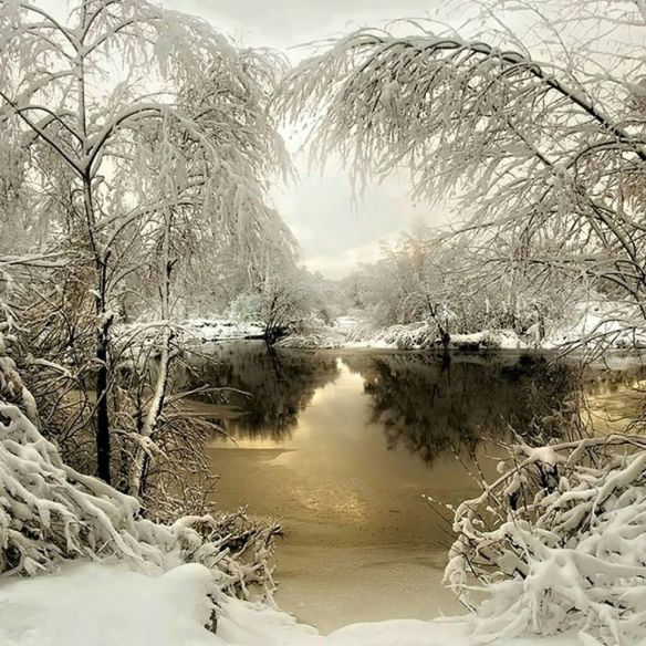 winter-sundown-photography-by-igor-vassiliev
