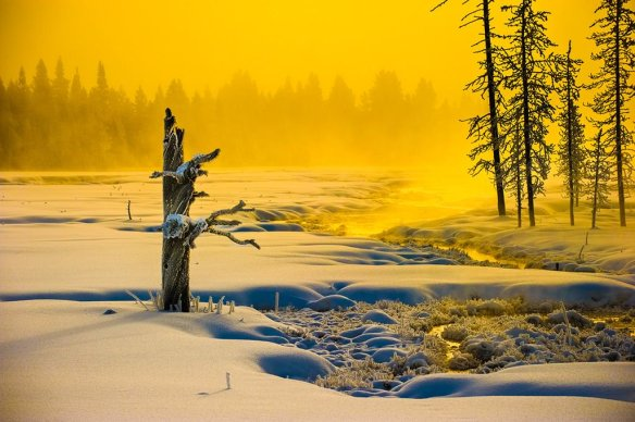 yellowstone-morning-in-winter-photography-by-howardignatius