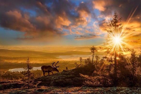 a-new-day-photography-by-jorn-allan-pedersen