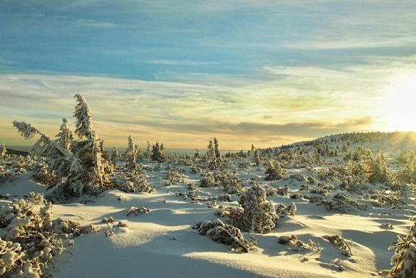 krkonose-national-park-czech-republic-photography-by-milan-letosnik