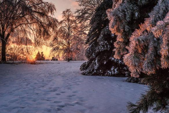 sunset-in-a-winter-wonderland-photography-by-bill-hertha