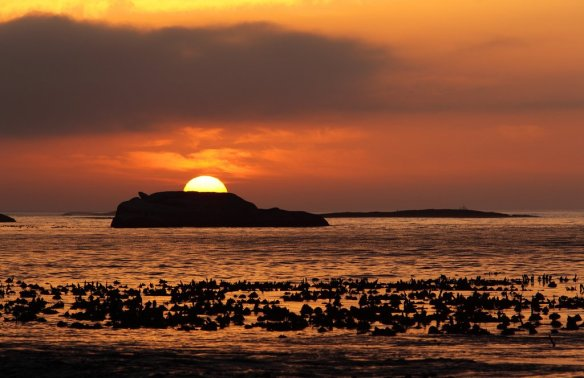sunset-on-cape-peninsula-south-africa-photography-by-dietmar-temps