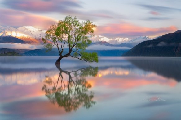 Colors Of Wanaka, New Zealand | Photography by ©Karen Plimmer